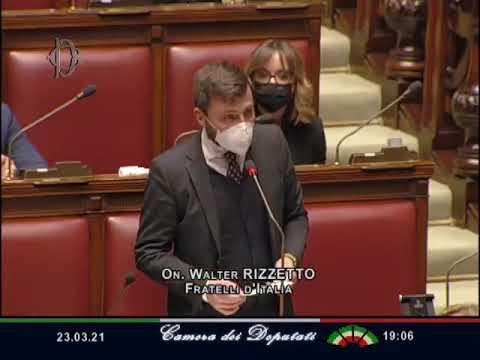 On. WALTER RIZZETTO – Interrogazione parlamentare